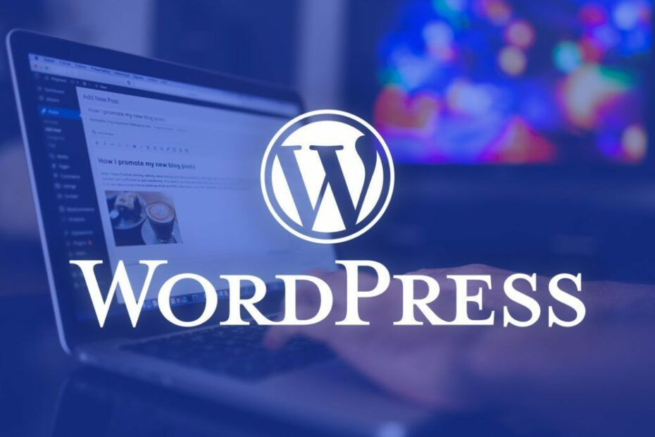 Fast and SEO first WordPress development